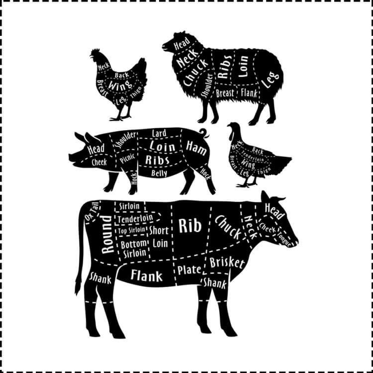 Meat Cuts Red Deer